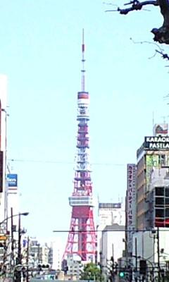 今日の東京タワー(2013/4/12)